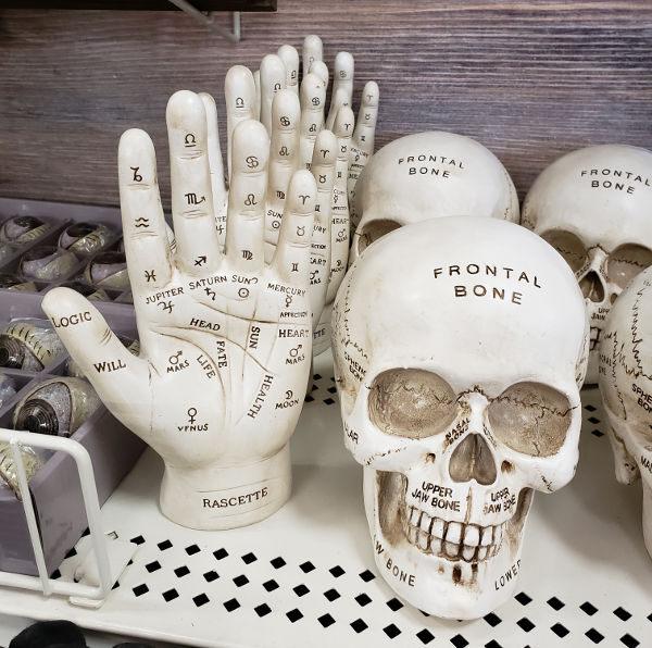 2018 Michaels Hallowen tabletop skull head and palmistry hand