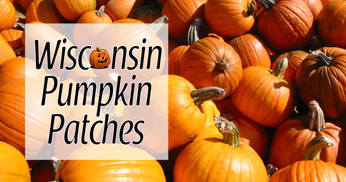 Wisconsin Pumpkin Patches